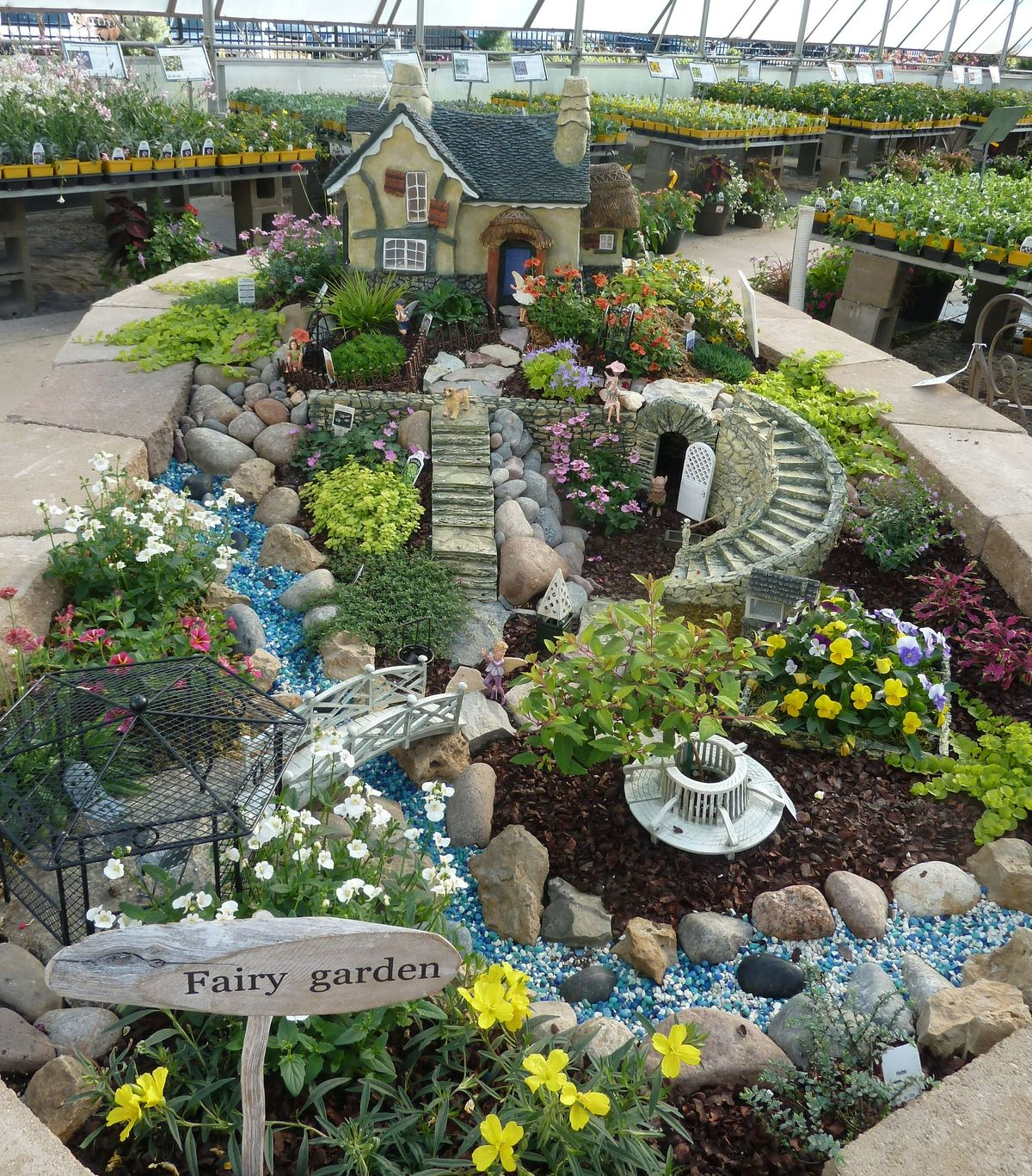 fairy garden plants and flowers