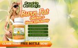 garcinia-cambogia-reviews-2019