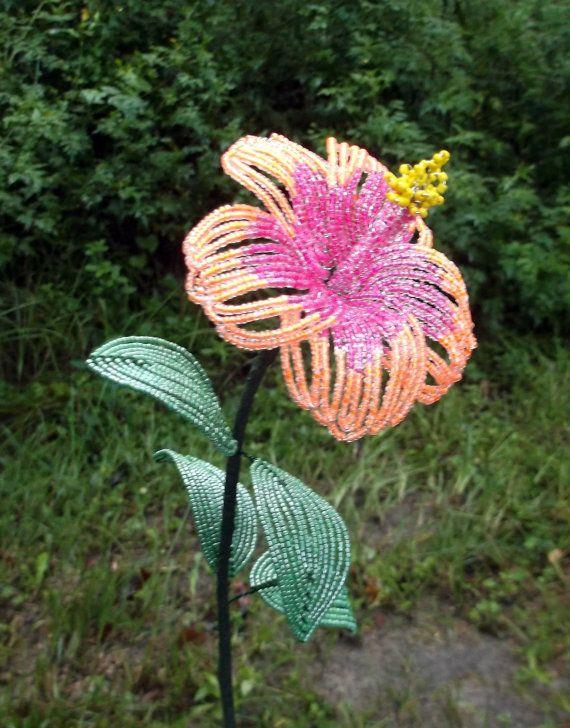 hibiscus bisexual flower