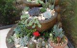 mini-succulent-gardens