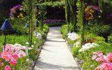 pics-of-garden-flowers