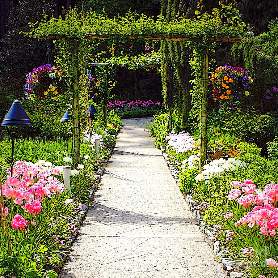 pics of garden flowers